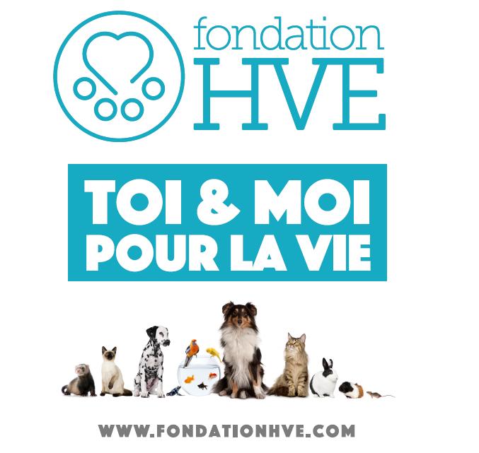 Logo Fondation HVE